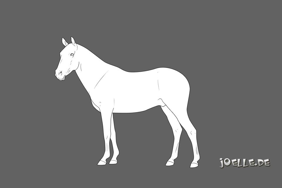 Mustang1_m1_960.jpg
